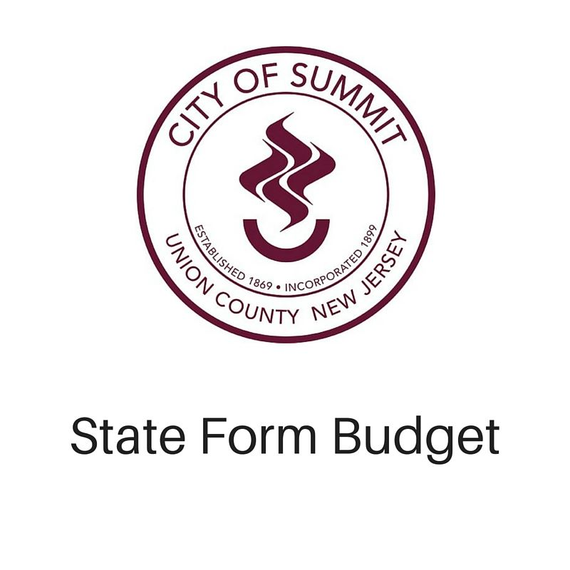 Budget 4 state form