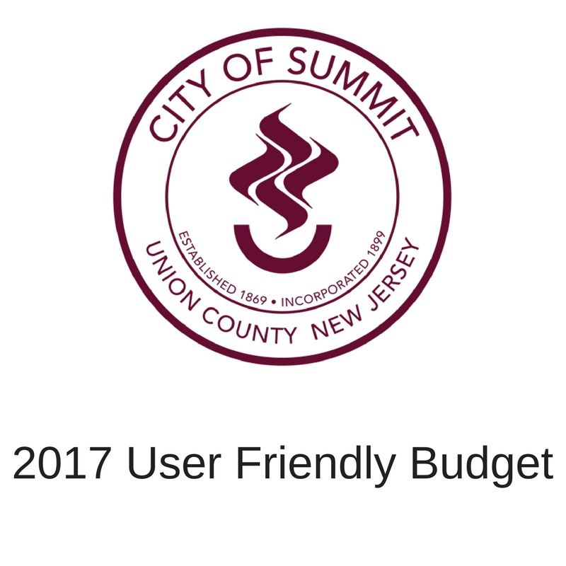 User friendly budget(2)
