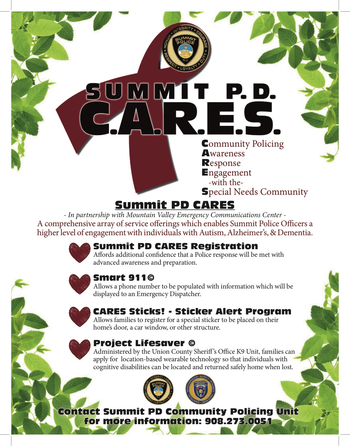 Summit PD CARES Flyer